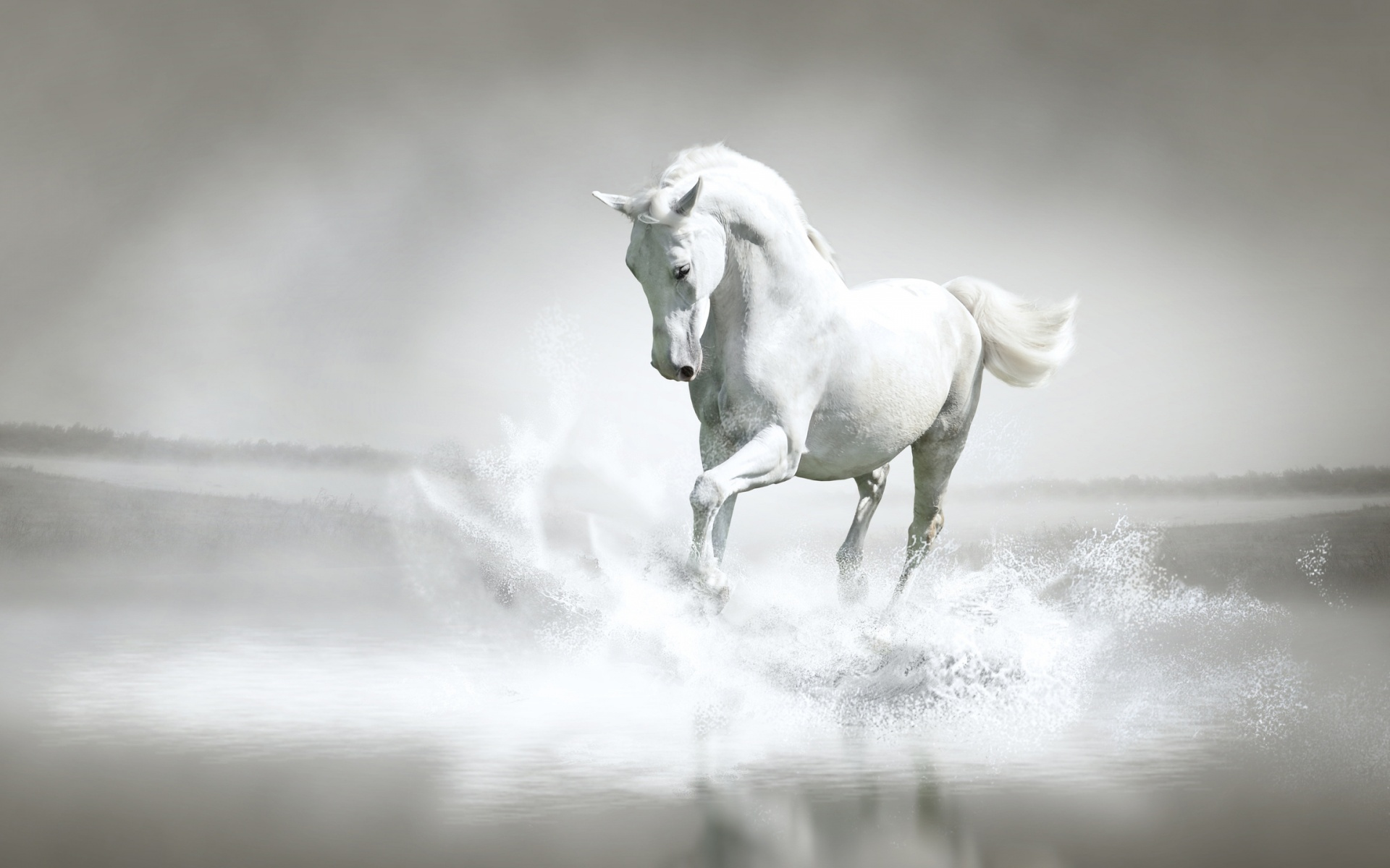 White-Horse-Water-1920x1200